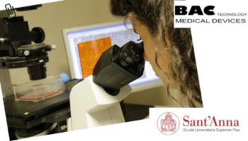 Dall'Istituto di BioRobotica della Scuola Superiore St.Anna arrivano importanti risultati sugli ultrasuoni a bassa frequenza BAC Technology